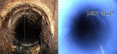 Before Image: Roots in Sewer Line. After Image: Clean Sewer Pipe Lining